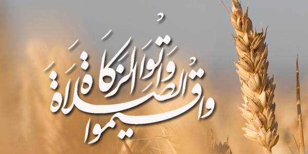 الزكاة في القرآن الكريم